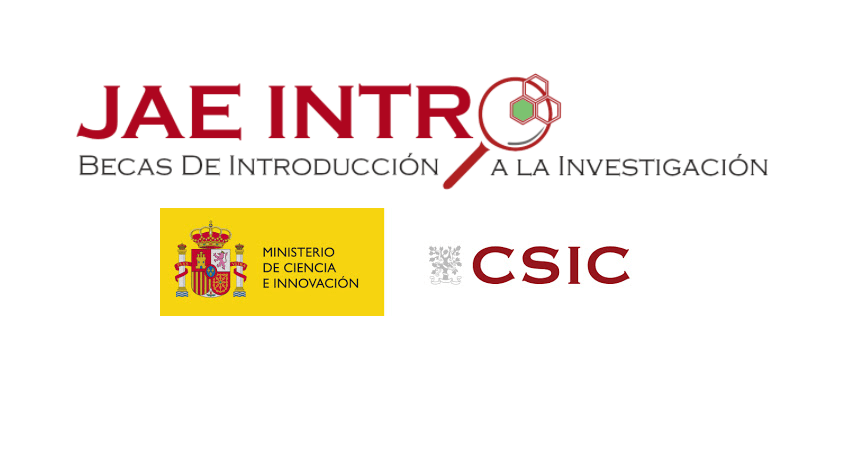 jae intro_web